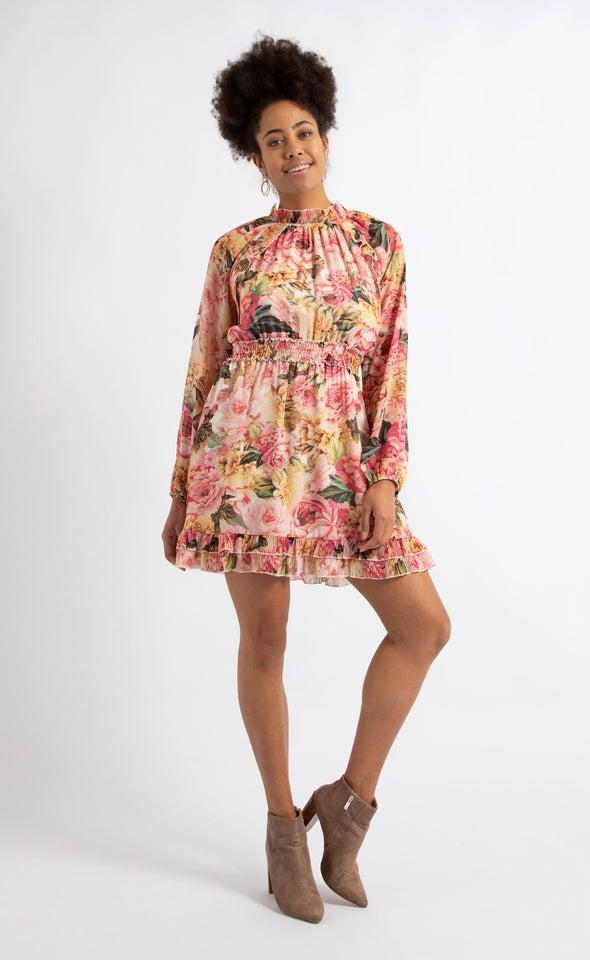 Chiffon High Neck Ruffle LS Dress Beige/pink