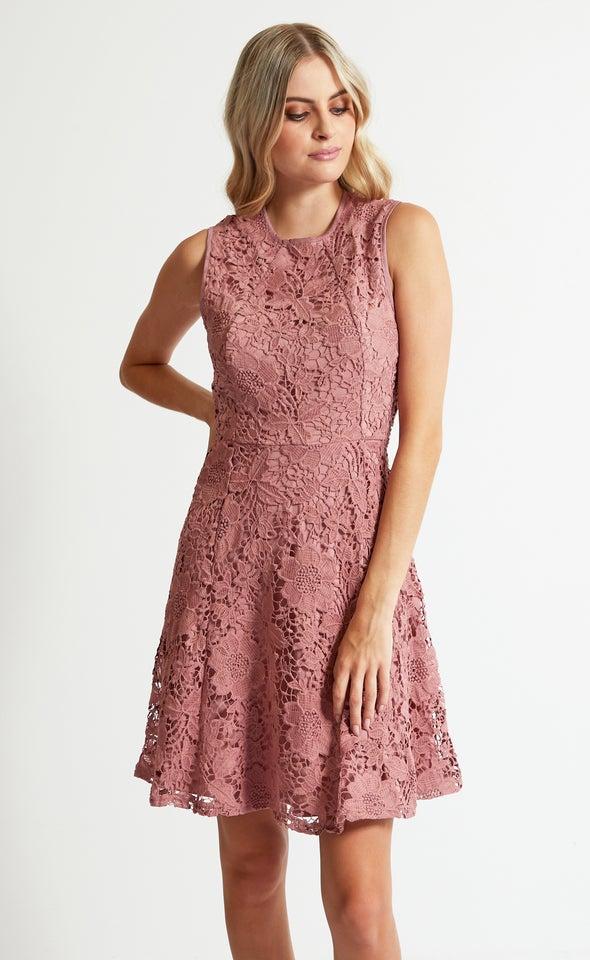 Crochet Lace Skater Dress Blush