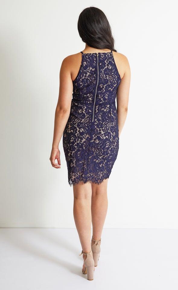 Floral Scallop Lace Dress Navy/blush