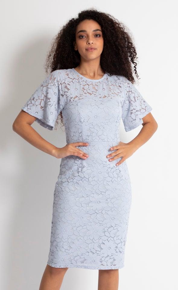 Lace Cape Sleeve Pencil Dress