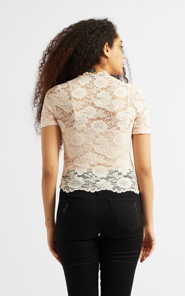 Scallop Lace Short Sleeve Crop Top Blush